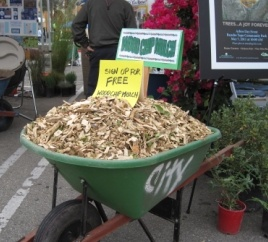Free Wood Chip Program